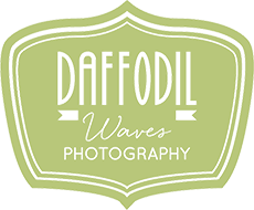 Daffodilwaves - Photography
